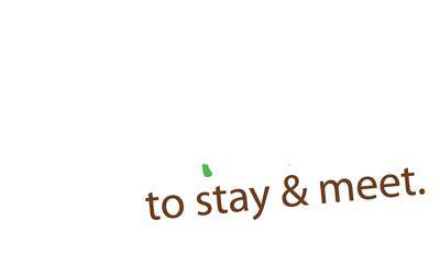 stay & meet