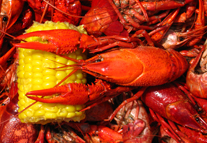 PearlandCrawfish-HomePage