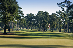 Golfcrest in Pearland