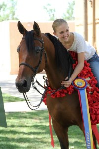 Bay Area Equestrian Center Spring Fling Show Off And Open