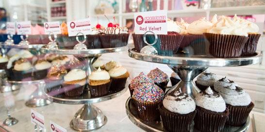 Smallcakes Cupcakery Amp Creamery Pearland Texas