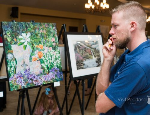 Pearland Arts League 8th Annual Juried Exhibition