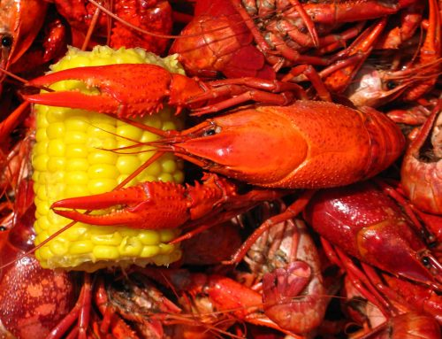 Pearland's Top Spots for Crawfish